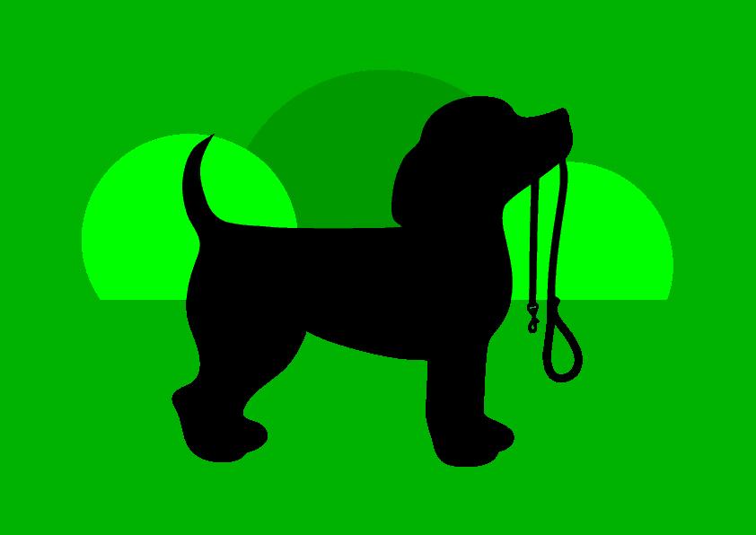 Bailey de Hondenvriend